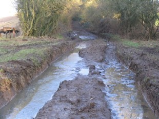 Damaged lane, Candovers, Hampshire